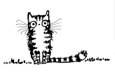 algy-cat