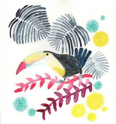 toucan-for-web